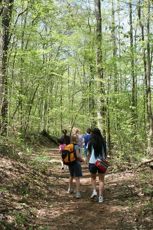 Group of hikers walking on trail in woods